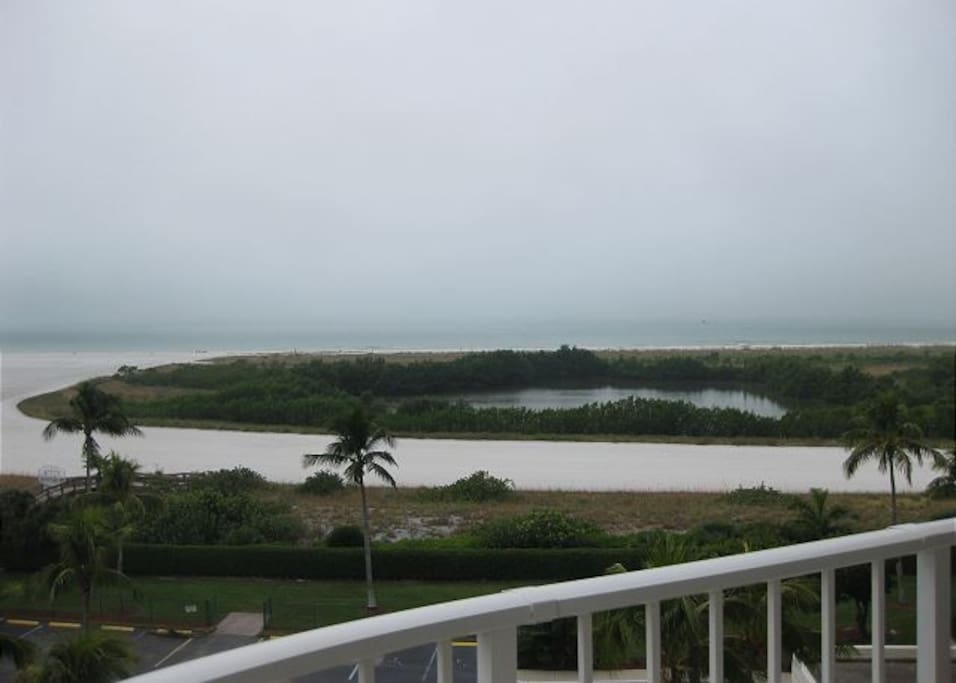 Tigertail Preserve from Private Balcony