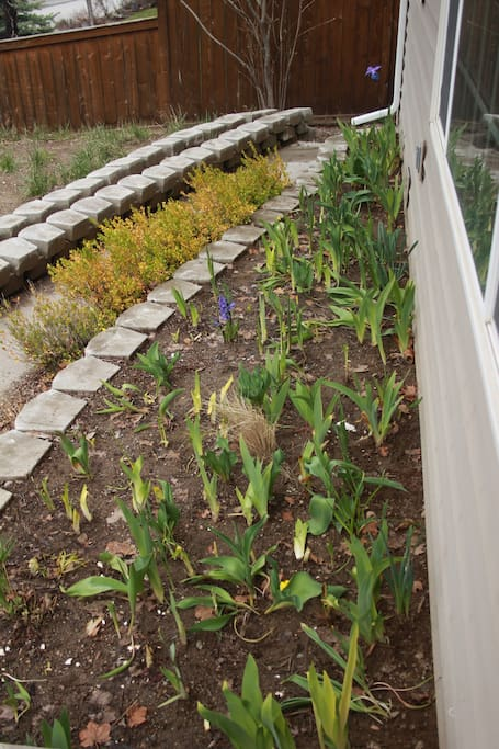 Flower beds out front