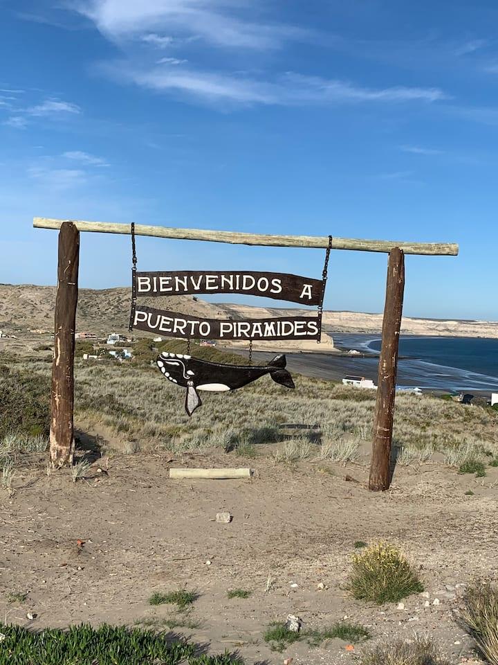 Playa de ensueño en Península Valdés