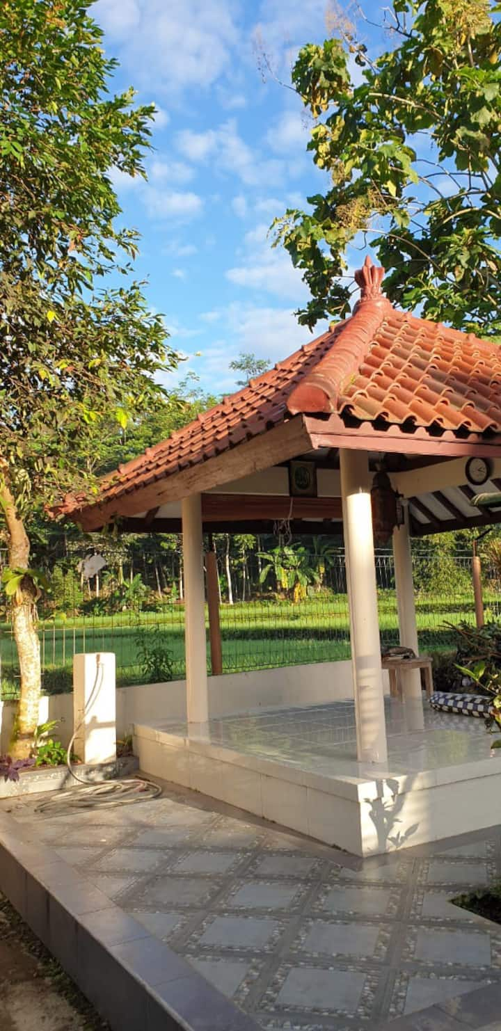 Homestay with Rice Field view in Tasikmalaya