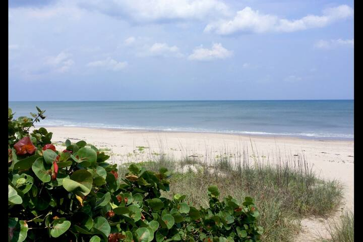 Remodeled Beach House, Steps from the Beach, Perfect for Families & Snowbirds!