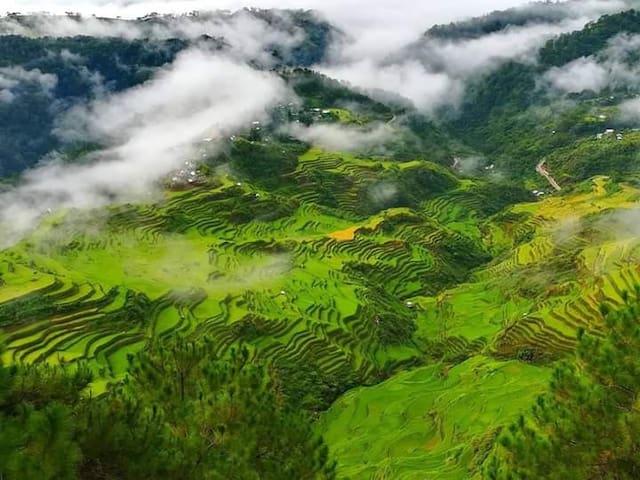 Alicia's Maligcong-Homestay