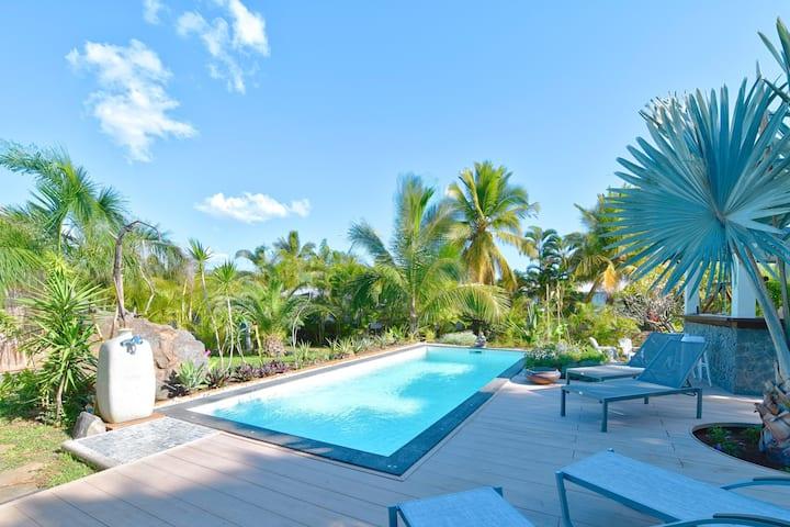 Villa, piscine chauffée, jardin tropical St Gilles