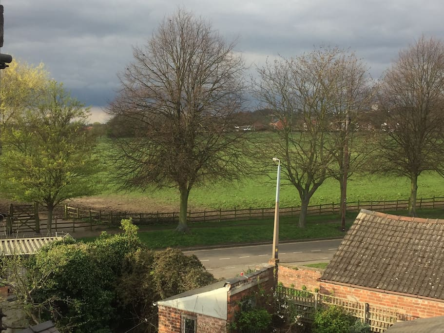 View of the West Common from bedroom window