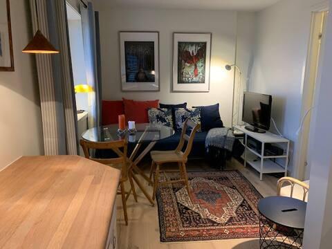 شقة في وسط المدينة مع إطلالة على درامينسيفا
