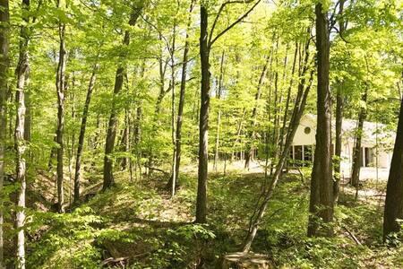 Michigan Woods Retreat