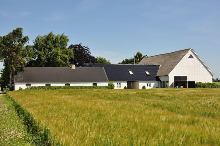 "Lovely farmhouse ""Lina"" in Löderup - Löderup - Mökki"