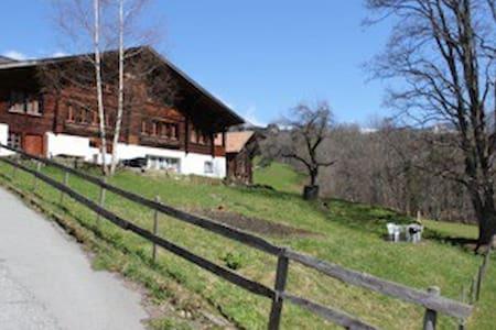 Chalet Isch - Grindelwald - Lejlighed