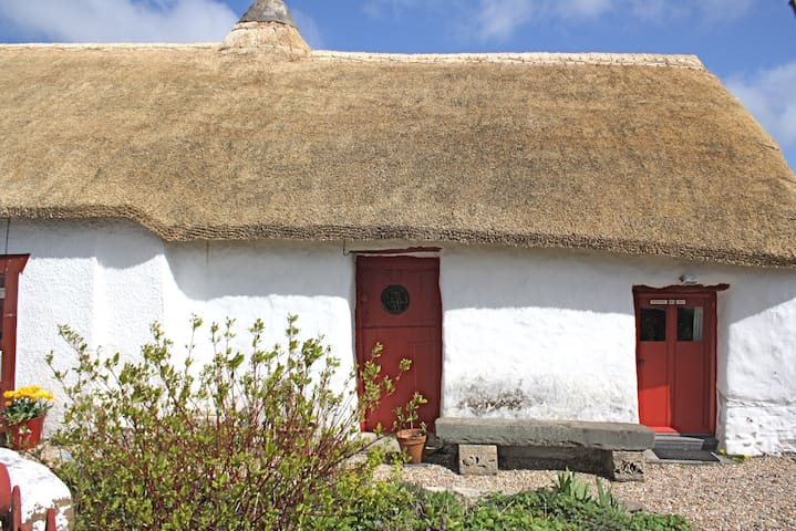 Thatch cottage retreat nr to coast. - Felinfach - Haus