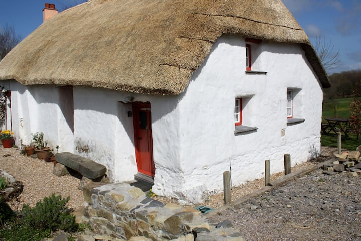 Romantic cottage shown on CH4TV - Ffynnon Oer Isaf
