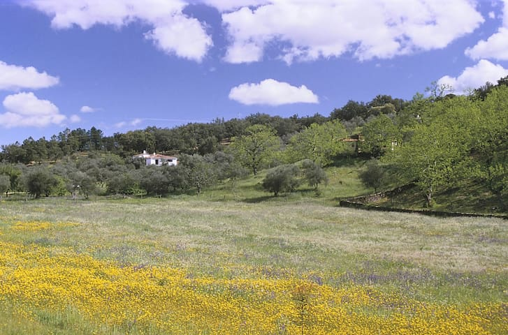 Rural bliss in the hidden sierras - Fuenteheridos - Hus