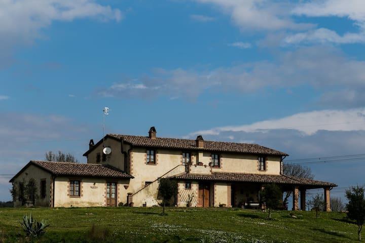 Agriturismo Greppa bovi - Paganico - ที่พักพร้อมอาหารเช้า