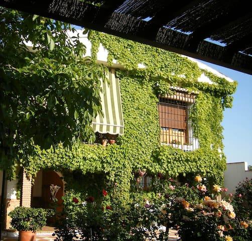 Sosiego a diez minutos de Granada - Alfacar - Daire