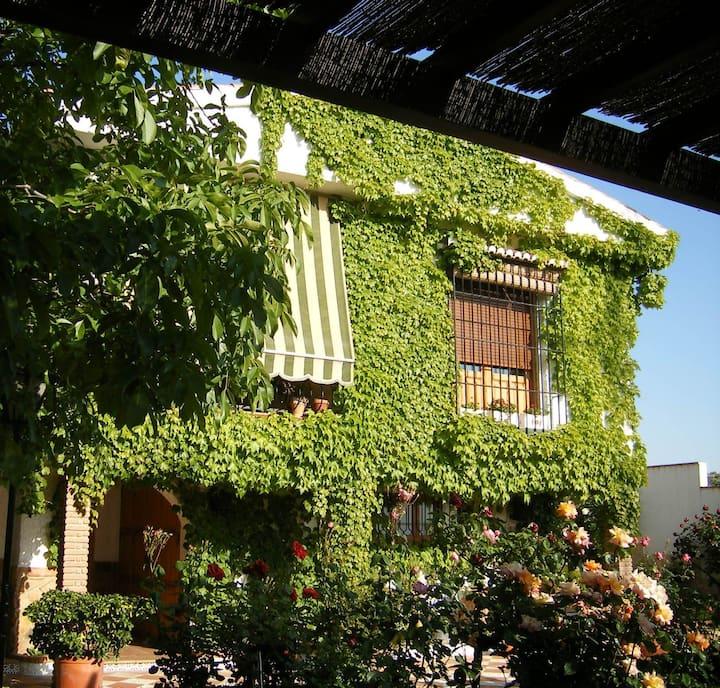 Sosiego a diez minutos de Granada