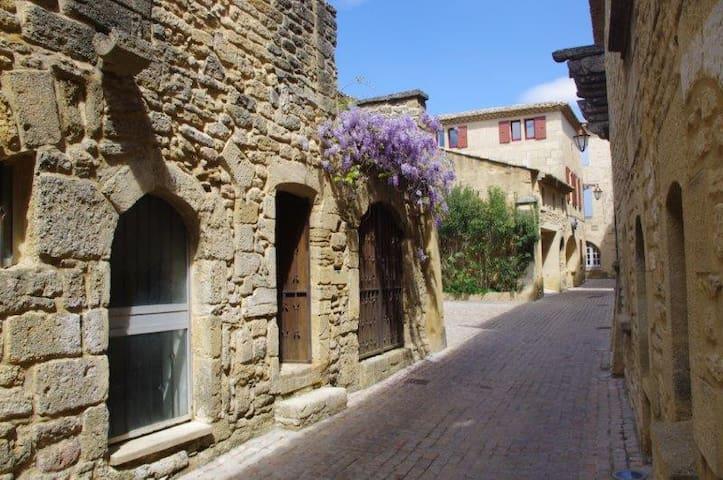 """La Petite Perle"" - Castillon-du-Gard - Casa"
