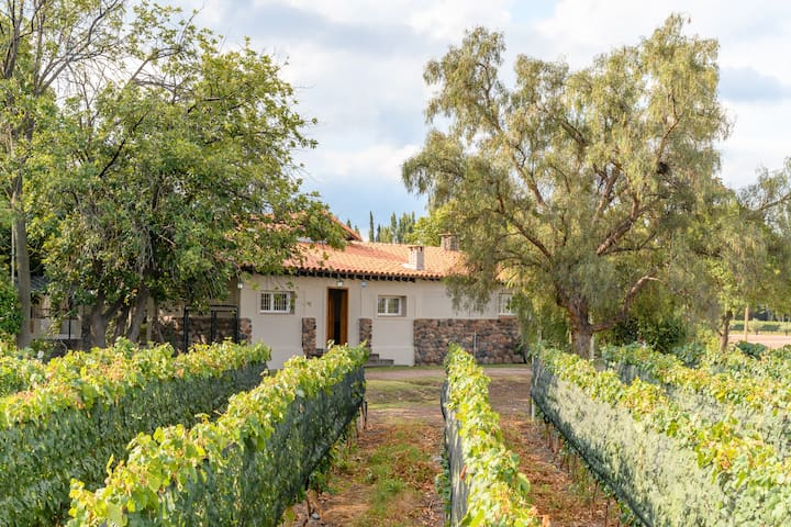 FINCA BANDINI- GUEST HOUSE- LAS COMPUERTAS-