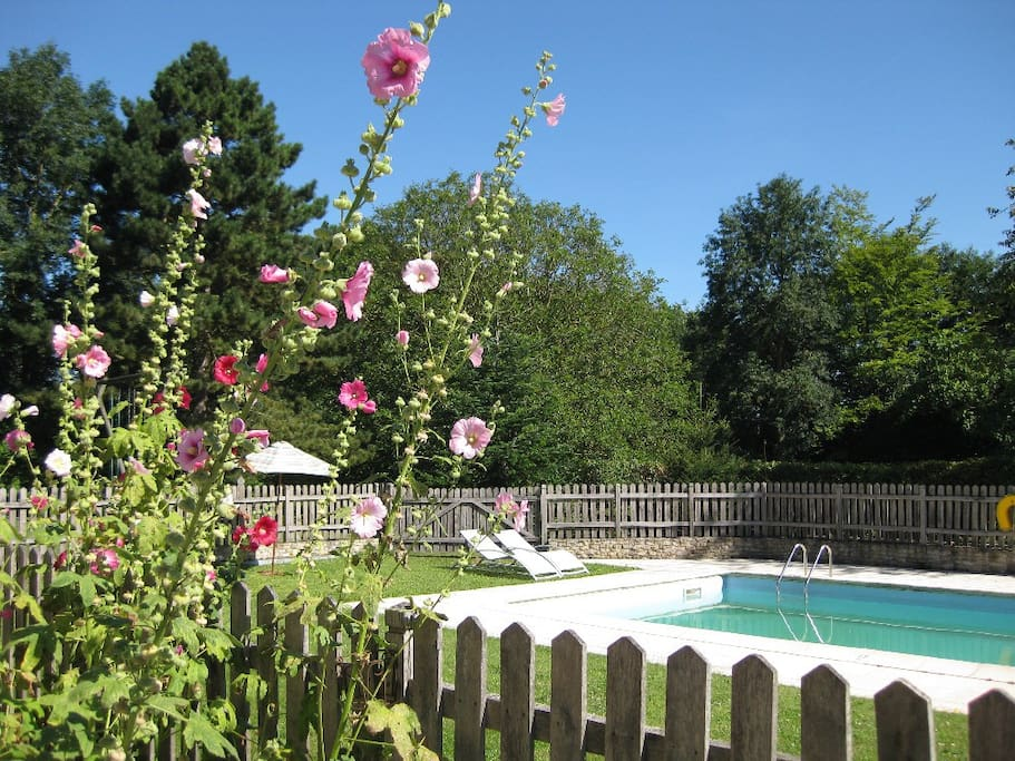 Cold-water pool operational June to September