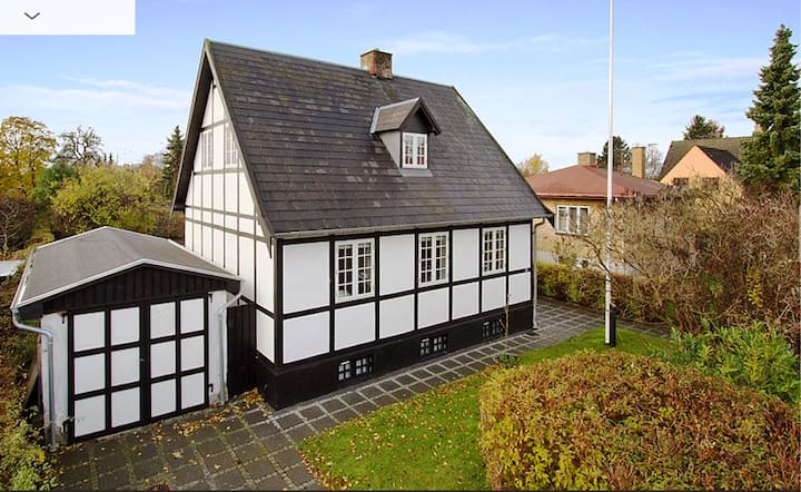 Beautiful Traditional Danish Villa