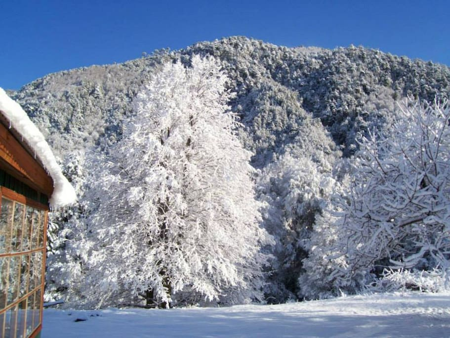 A pocos kilómetros del Centro de Ski y Centro Termal  de Malalcahuello