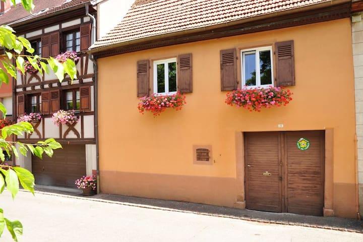 Maison typique alsacienne au coeur du village - Pfaffenheim - Dom wakacyjny