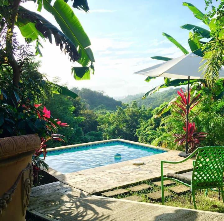 Casa Florencia Suite# 2 WiFi, Pool, Rincon