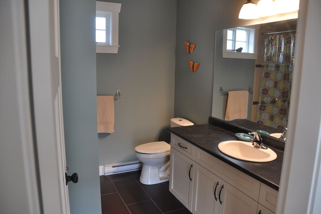 Guest ensuite bathroom with tub and nice shower.