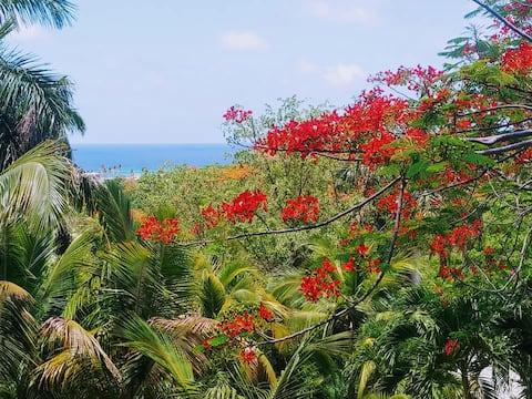 Побег на Карибы с видом на океан