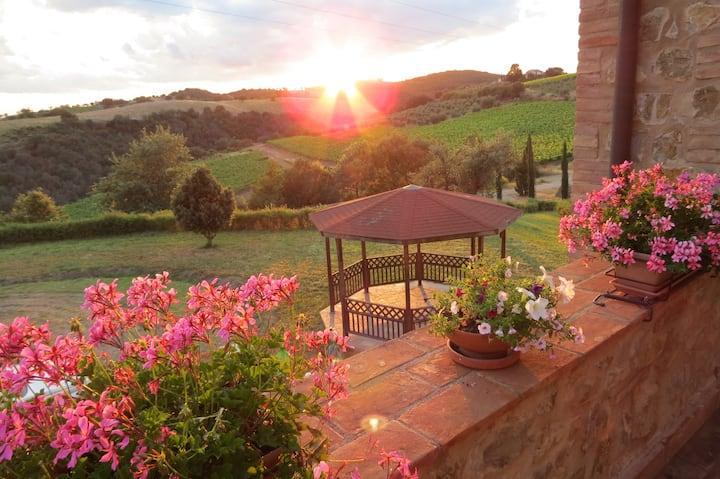 Farmhouse in Cinigiano - Amiata apt.