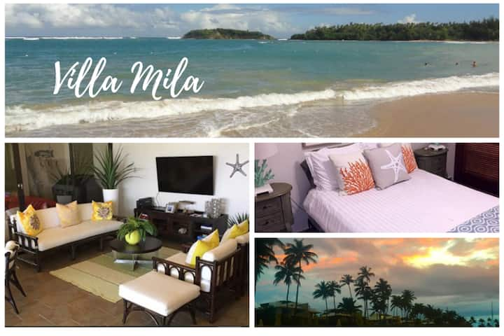 💎 Beautiful 4 BDR Villa Mila at Cerro Gordo