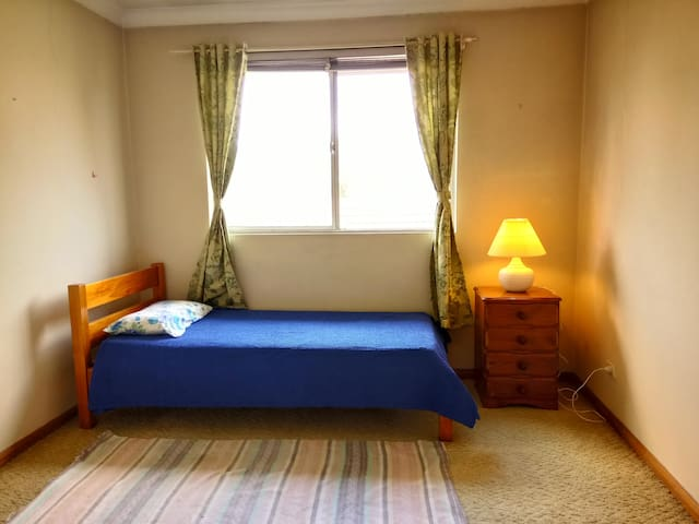 Bright unit close to city, safe, females only. - Homebush West - Apartmen
