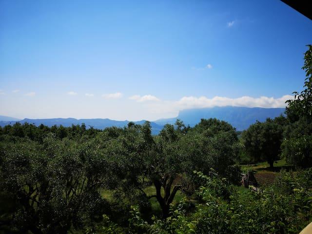 Villa Colli - piccola perla nel Cilento