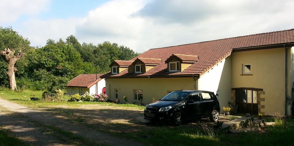 Spacious country house & garden, sleeps 8-12 - Saint-Lon-les-Mines - Casa