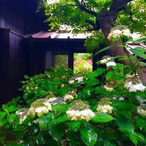 Kamakura/samurai極楽寺ー稲村ケ崎/Sea&温泉/86㎡学生サークル会議セミナー女子会 - Kamakura - Apartment