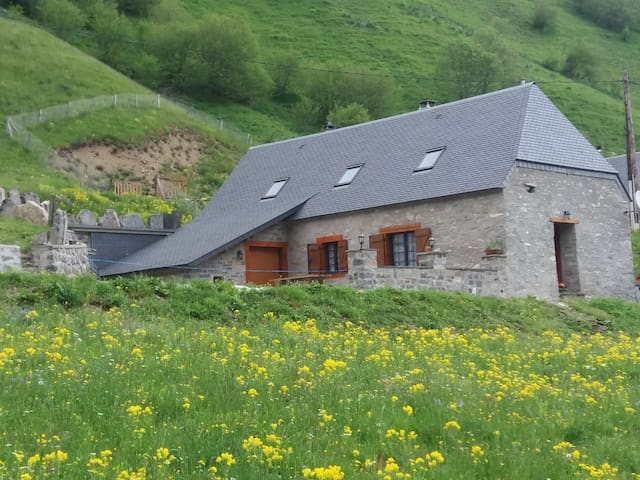 Grange rénovée pieds pistes - Saint-Lary-Soulan - Huis