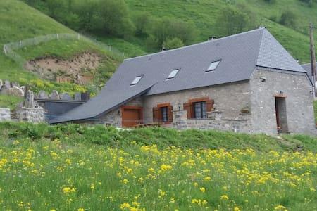 Grange rénovée pieds pistes - Saint-Lary-Soulan - Hus
