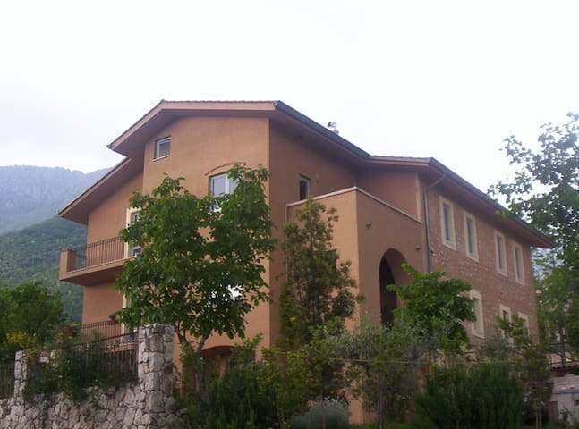 Country House in the olive grove