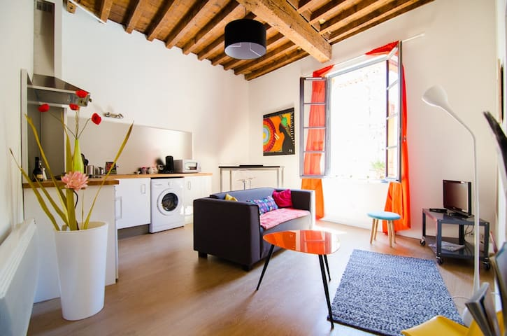 Modern apartment in the city ! - Arles - Pis