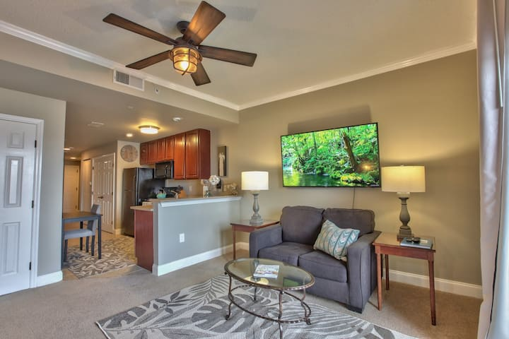 Downtown Tallahassee Luxury Apartment