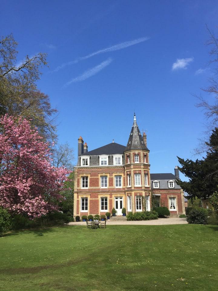 Castle of «Le Ronchay»