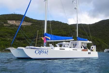 Enjoy Tranquil B&B on the Water! - St. Thomas