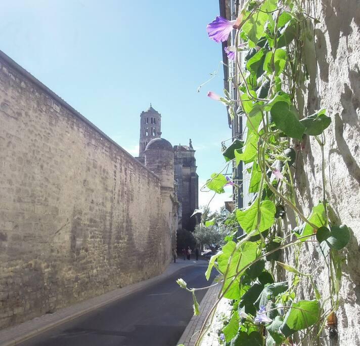 vue de la rue, avec la tour Fénestrelle, et la cathédrale...