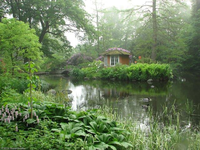 Ulriksdals botanical garden - artist studio