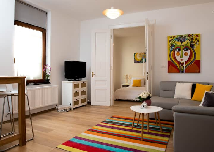 Cozy and Chic Unirii Square Apartment