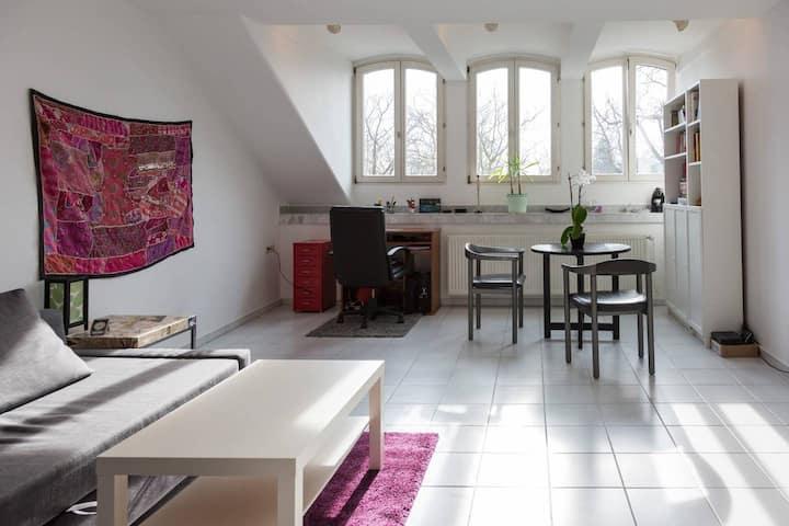 City Centre - Apartment in Bonn - best location!