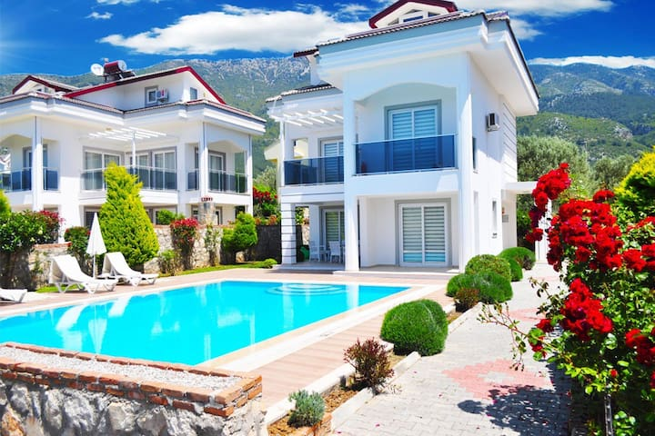 Twin villa 2