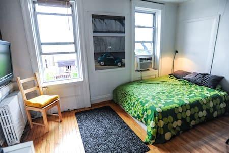 Modern 500sq Pad + Rooftop - Brooklyn - Apartment