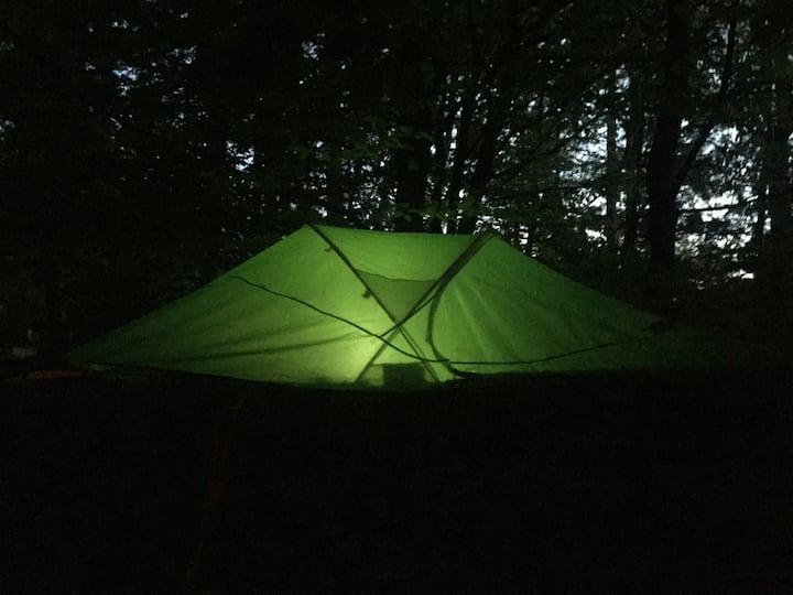 Schlafen unterm grünen Dach