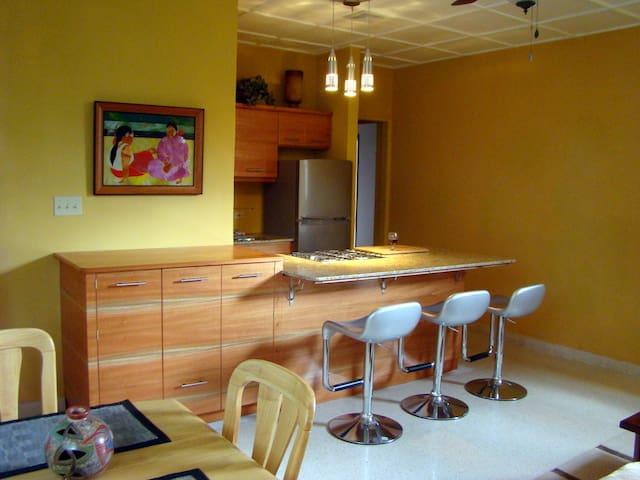 Fine Boquete Apartment - Boquete - Apartament