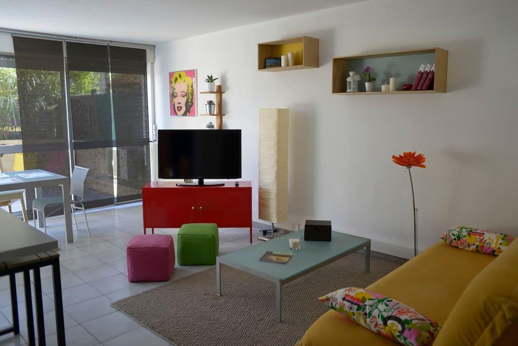 Salon - Canapé - lit - Télé 101cm