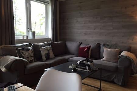 Enkel og fin hytte i Birkenåsen, med utsikt